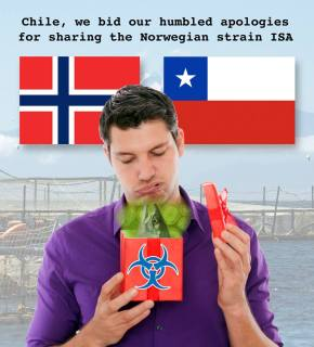 Chile, we bid our humbled apologies for the sharing of Norwegian strain ISA