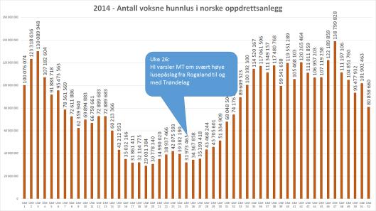 2014 antall voksne hunnlus søyle